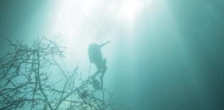 Cenote 2